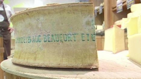 Savoie: un Beaufort qui produit de l'électricité   Un monde durable   Scoop.it
