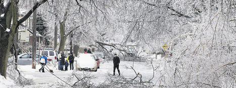 Yello - Blog : Ice Storm in Canada, Time to call loved ones to share their misery!   Cheap International Calls - Yello   Scoop.it