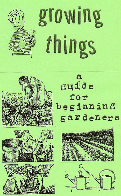 Growing Things: A Guide for Beginning Gardeners (Zine) | Writing and Journalling | Scoop.it