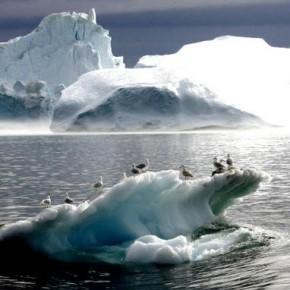 Cambiamento climatico, la ricerca definitiva. La colpa è dell'uomo?   Mondoeco.it   Scoop.it