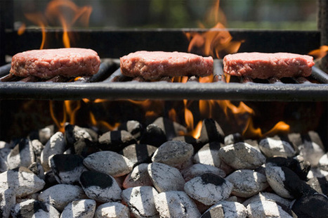 A Geek's Guide to Grilling: Food + Cooking : gourmet.com | @FoodMeditations Time | Scoop.it