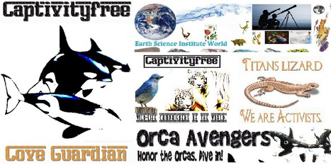 """Via @EndSeaworld Save the Whales From #SeaWorld Our newest #OrcaAvenger  """"Thanks"""" 