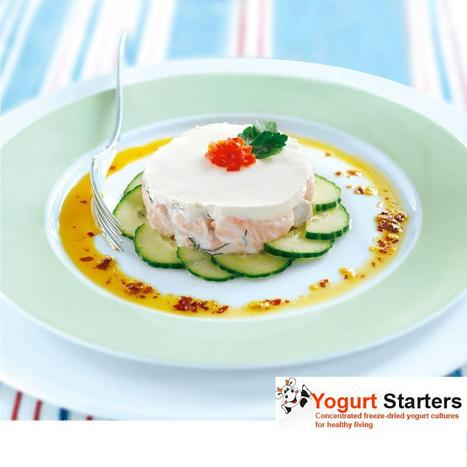 YOGURT STARTERS | yogurt,yogurt starters | Scoop.it