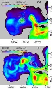Ocean heat content reveals secrets of fish migration behaviors: Study uses hurricane forecasting tool to show fishes affinity for ocean fronts and eddies | Marine Conservation Research | Scoop.it