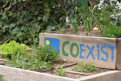 Permaculture and Biodynamics: sustainable systems of living and growing - The Ecologist   Look at what I am doing   Scoop.it