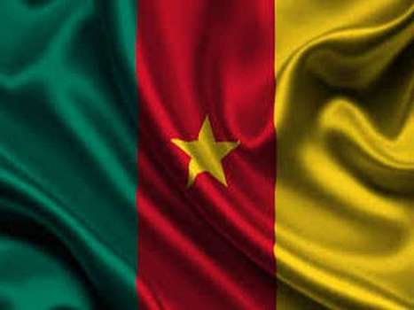 Cameroon deploys troops to Nigeria border - World Bulletin | News You Can Use - NO PINKSLIME | Scoop.it
