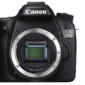 Anteprima Canon Eos 70D - Wired.it | Fotografia | Scoop.it