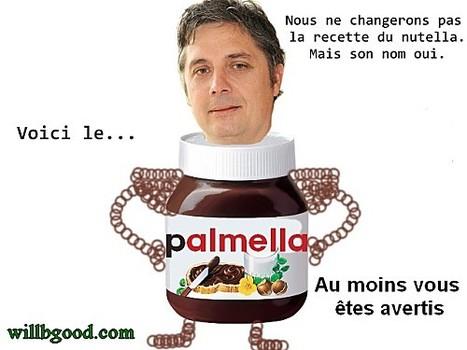 Huile de Palme : Doit-on boycotter le Nutella ? [décryptage] | News from net | Scoop.it