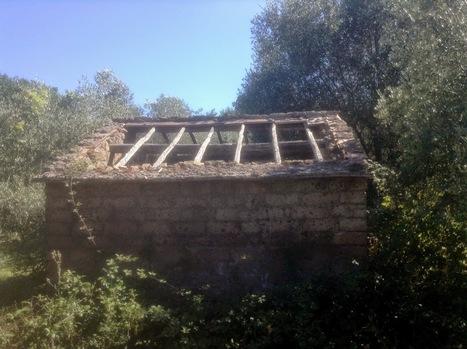 monteverdelegge: Il testamento | Racconti originali di Monteverdelegge | Scoop.it