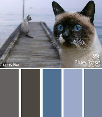 Color Inspiration: Lonely Pier | Typography & Color Inspirations | Scoop.it