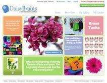 Daisy Brains Sees an Increase in New Members from Pinterest Following | Pinterest | Scoop.it