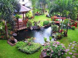 How to Start a Garden? | Online Information | Online Information | Scoop.it