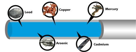 Rủi ro sức khỏe từ kim loại nặng | may loc nuoc | Scoop.it