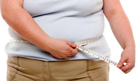 Nguyên nhân và tác hại của bệnh béo phì đến sức khỏe | Game Mobile Hot | Scoop.it