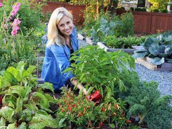17 millions de jardiniers… Et vous, et vous, et vous ! - Le Figaro | Plus de légumes et moins de béton | Scoop.it