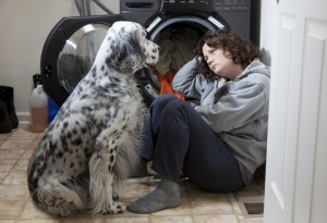 Domestic Abuse and Animal Cruelty : The Straight Poop | job shadow | Scoop.it