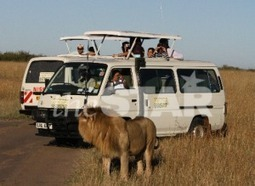 Lessons from Namibia where wildlife policy actually works | Wildlife Trafficking | Scoop.it