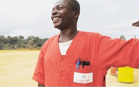 Filière bois : Rougier retrouve le sourire - Gabonreview.com   Actualité du Gabon     La parole de l'arbre   Scoop.it