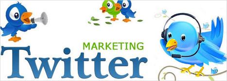 10 Consigli per un Twitter Marketing di successo | Absolut1893 | Scoop.it
