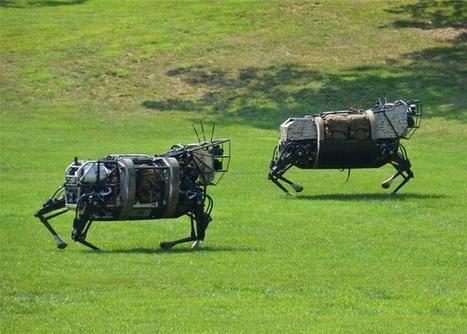 Meet the Marines' Humdrum Toy: A Headless Miniature Pony Robot | Where's my Rosie? | Scoop.it