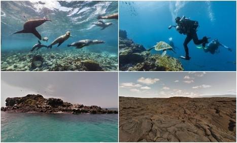 Google captura las Islas Galápagos con Street View   A visionary approach   Scoop.it