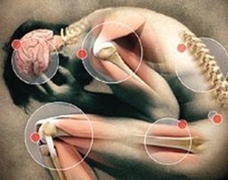 Identifican molécula clave contra dolor   Uso inteligente de las herramientas TIC   Scoop.it