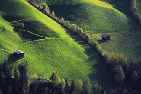 La haie champêtre: un outil agricole - DEFI-Écologique : le blog | Les colocs du jardin | Scoop.it