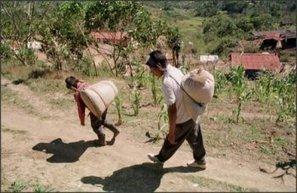 Mexique : Caritas veut relever le défi de l'autonomie alimentaire – SECOURS CATHOLIQUE – Caritas France | Secours Catholique | Scoop.it