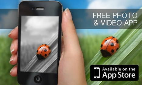 We have released the LadyBug Filters. Oh no, another photo app you will say… We dare you to try it and be amazed! | Sis Software application | Scoop.it