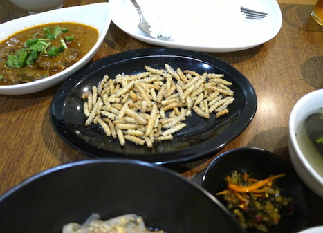 Enjoy some Shan cuisine with a side order of caterpillars at Tokyo's Nong Inlay restaurant | Entomophagy: Edible Insects and the Future of Food | Scoop.it