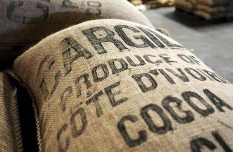 Le prix au producteur de cacao en baisse pour la petite récolte en Côte d'Ivoire | Banania Split | Scoop.it