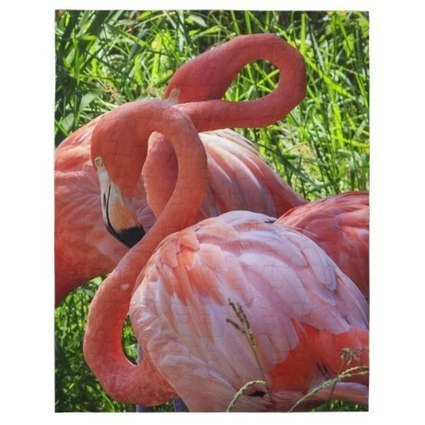 Beautiful Bird Jigsaw Puzzles For Bird Lovers | Boutique Shops News! | Scoop.it