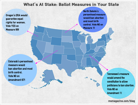 What's at Stake: Ballot Measures in Your State | Coffee Party Feminists | Scoop.it