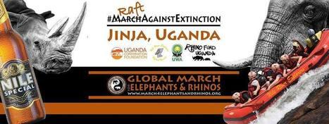 Global Raft for Elephants & Rhinos, Uganda  Jinja Event Guide   Africa Travel Guide   Scoop.it