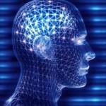 Quelle est votre forme d'intelligence? logique, verbale, spatiale etc. | Management et projets collaboratifs | Scoop.it