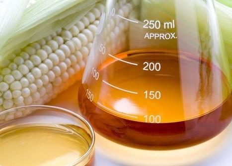 Agrocarburants : le désaveu de l'Union européenne | Nouveaux paradigmes | Scoop.it