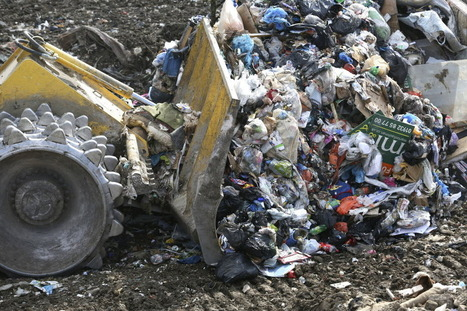 How to Spot the Garbage in News - Bloomberg View   21st Century Literacy and Learning   Scoop.it