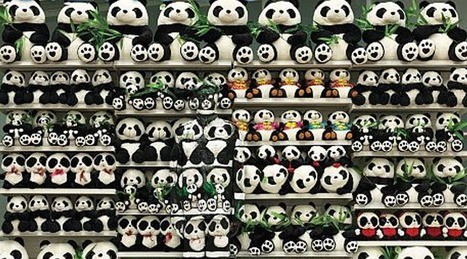 Can You See the Man Hidden in These Pandas? | Mind changing pictures | Scoop.it