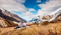 Tourism New Zealand Harnessing The Power Of Tigers - Travelandtourworld.com | Travel and Tour World | Scoop.it