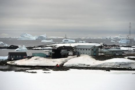 Antarctica: International relations in a cold climate | Antarctica | Scoop.it