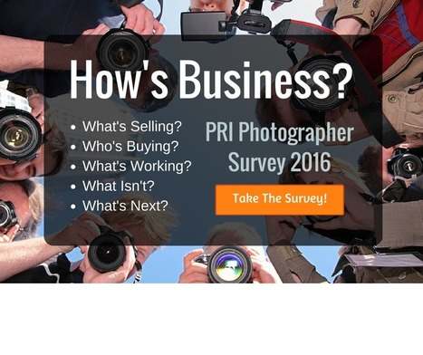 2016 Photographer's Business Survey | Selling Photography | Scoop.it
