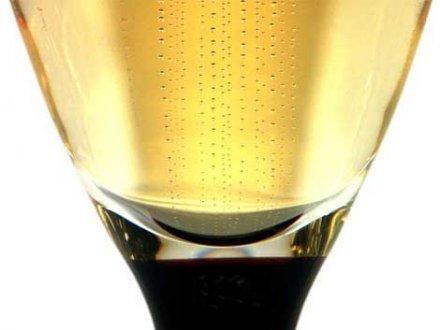 Champagne : le vignoble bio progresse timidement | Articles Vins | Scoop.it