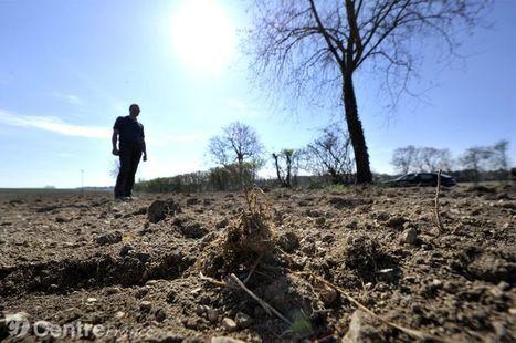 La sécheresse s'éternise dans le Cher. | La récupération d'eau de pluie en France | Scoop.it
