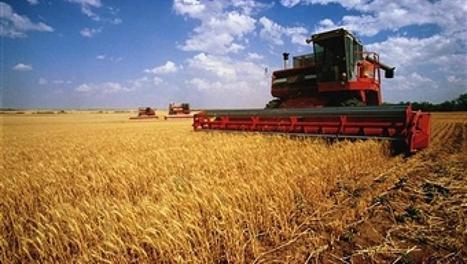 L'UE devient le premier exportateur mondial de produits agricoles devant les USA   Chimie verte et agroécologie   Scoop.it