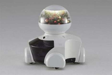 MyE / Management y Estrategia, pensando el Futuro : Patin, El Nuevo Robot Asistente del Hogar | Management & Estrategia, pensando el Futuro | Scoop.it