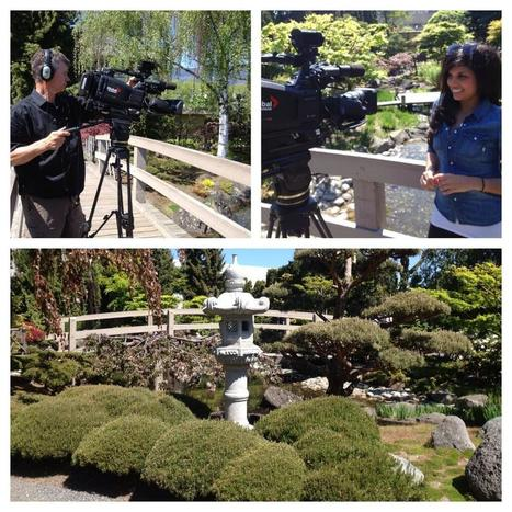 Twitter / Sonia_Sidhu: Gorgeous day to shoot our Whats ... | Japanese Gardens | Scoop.it