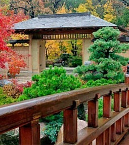 Rockford's Anderson Gardens among top North American Japanese Gardens | The Rock River Times | My Japanese Garden | Scoop.it