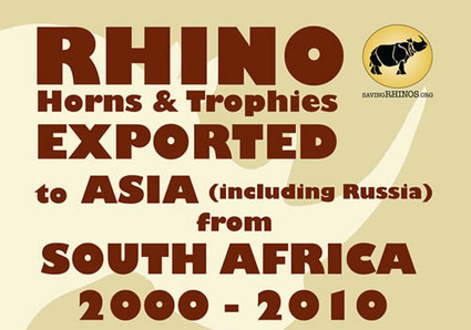 Rhino Horns and Trophies Exported to Asia from South Africa 2000 - 2010 [Infographic] | | What's Happening to Africa's Rhino? | Scoop.it