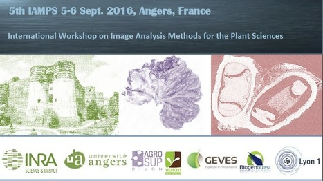 Image Analysis Methods for Plant Sciences - 5-6 Sept 2016, Angers, France | Rice Blast | Scoop.it