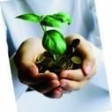 Algérie : Création d'un réseau de femmes d'affaires pour une économie verte - Hawa Magazine | Femmes d'affaires | Scoop.it
